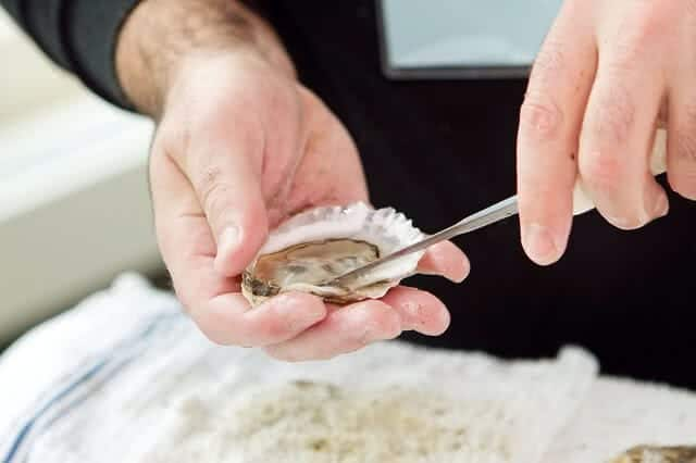 Image of the oyster shucking at the Bluff Oyster and Food Festival